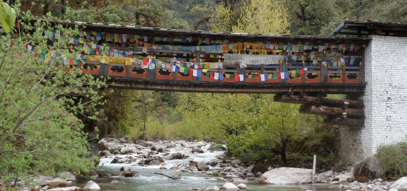 bridge_bhutan