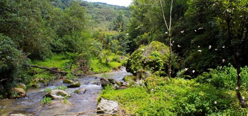 chisapani-nagarkot-trek